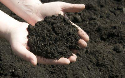 Testing Topsoil