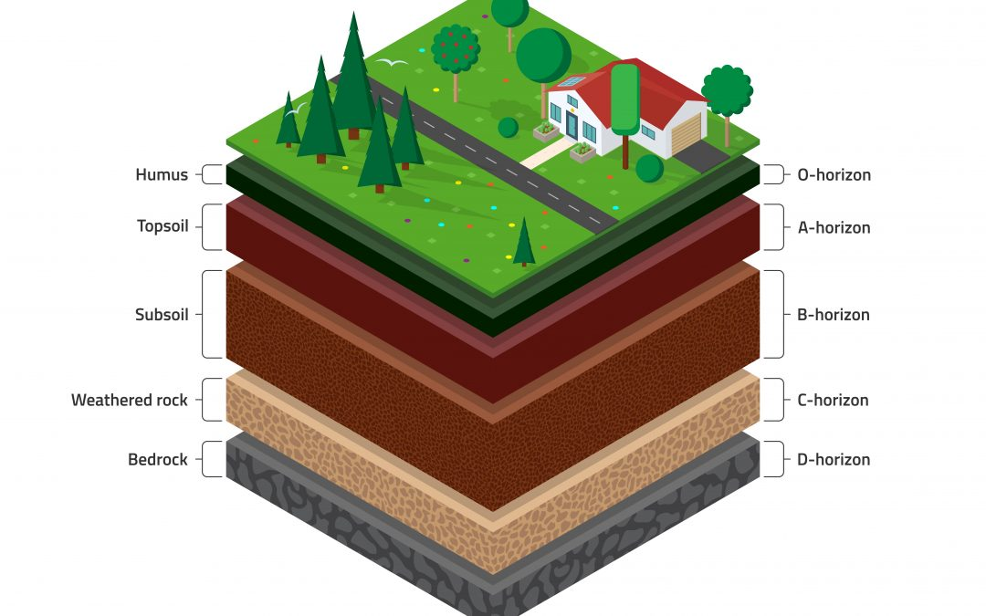 Types of Soil Horizons