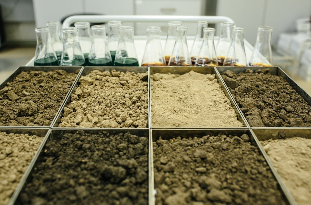 Why You Should Test Soil