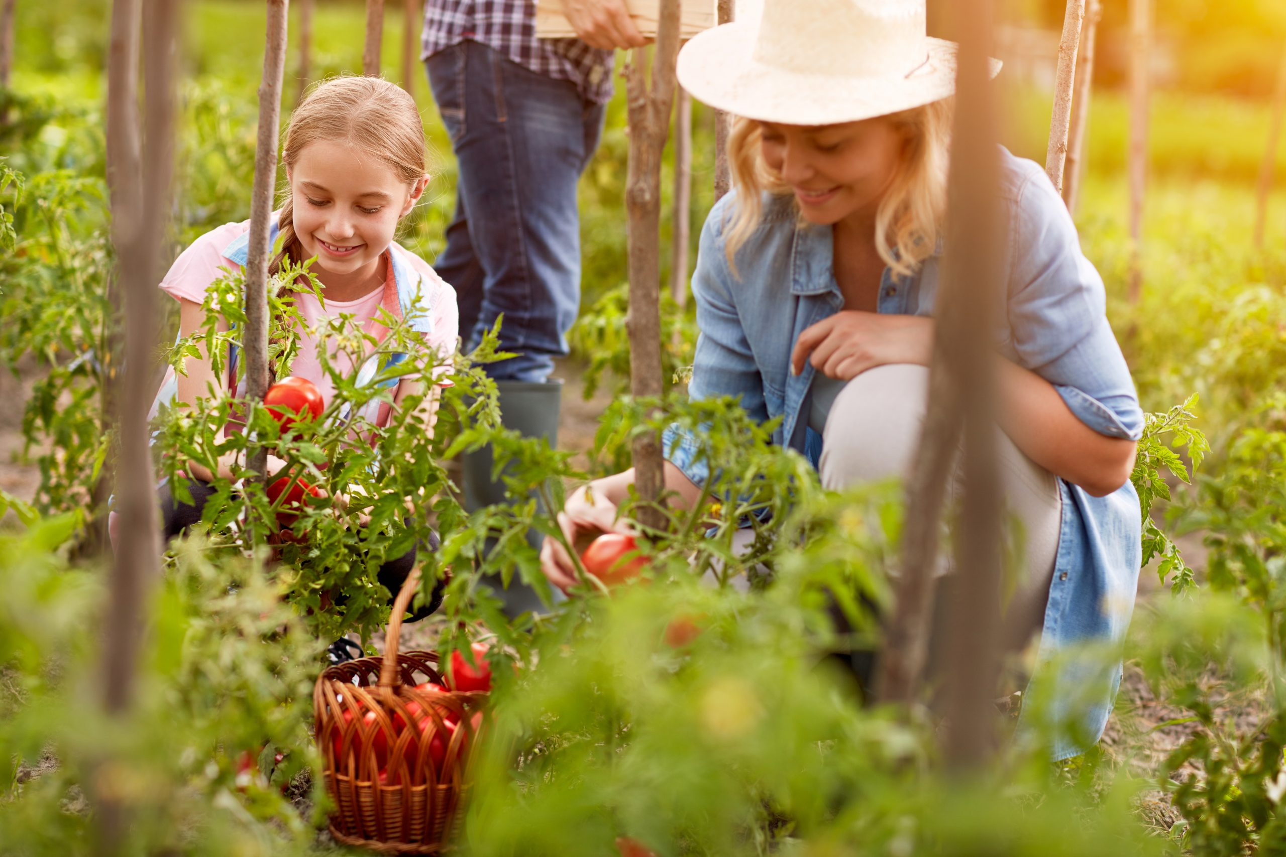 Health Benefits of Gardening